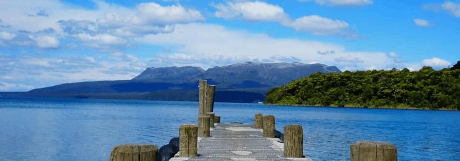 new Zealand woodtech